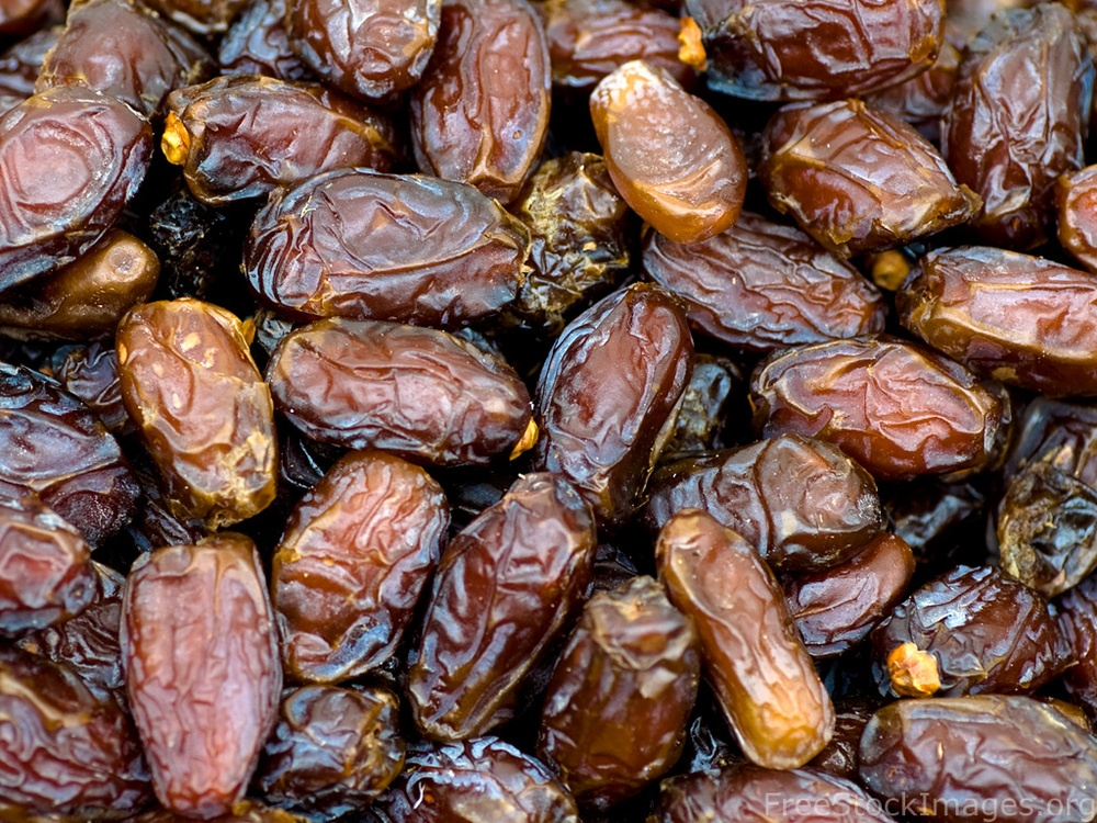 everyday dried dates | Halal Food
